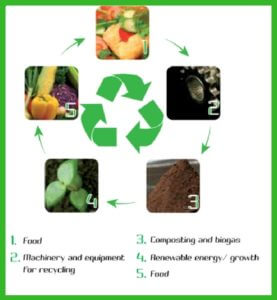 Food Waste Converter